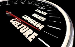 Culture measurement speedometer