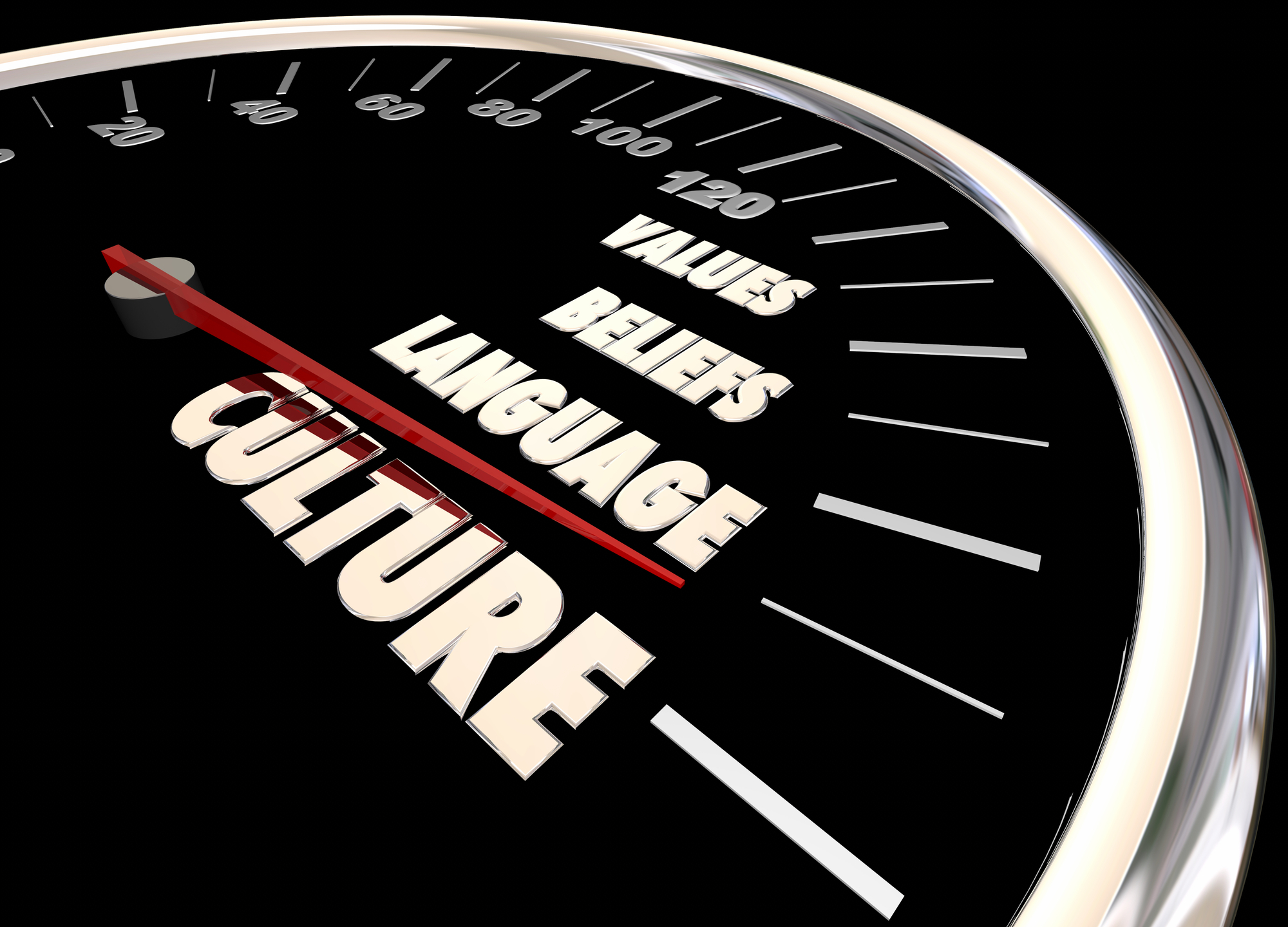 Culture speedometer