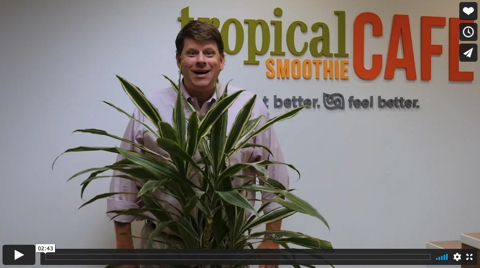 Charles Watson, CEO, Tropical Smoothie Cafe